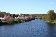 River Cree in Newton Stewart